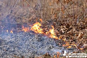 The small flame that causes a wildfire to start and spread.